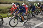 Tirreno Adriatico 2017 - 52th Edition - 3rd stage Monterotondo Marittimo - Montalto di Castro 204 km - 10/03/2017 - Nelson Oliveira (POR - Movistar) - photo Luca Bettini/BettiniPhoto©2017
