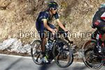 Tirreno Adriatico 2017 - 52th Edition - 4th stage Montalto di Castro - Terminillo 171 km - 11/03/2017 - Andrey Amador (CRI - Movistar) - photo Luca Bettini/BettiniPhoto©2017