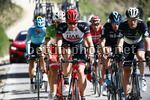 Tirreno Adriatico 2017 - 52th Edition - 5th stage Rieti - Fermo 209 km - 12/03/2017 - Filippo Ganna (ITA - UAE Team Emirates) - photo Luca Bettini/BettiniPhoto©2017