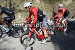 Tirreno Adriatico 2017 - 52th Edition - 6th stage Ascoli Piceno - Civitanova Marche 168 km - 13/03/2017 - Markel Irizar (ESP - Trek - Segafredo) - photo Luca Bettini/BettiniPhoto©2017
