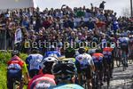 Giro delle Fiandre 2017 - 101th Edition - Ronde Van Vlaanderen - Tour of Flanders - Antwerp - Oudenaarde 261 km - 02/04/2017 - Oude Kwaremont - Scenery - Fans - photo POOL Peter De Voecht/PhotoNews/BettiniPhoto©2017