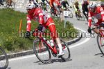 Tour of the Alps 2017 - 41th Edition - 3rd stage Villabassa - Funes 143,1 Km - 19/04/2017 - Marco Frapporti (ITA - Androni Giocattoli - Sidermec) - photo Luca Bettini/BettiniPhoto©2017