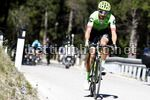 Tour of the Alps 2017 - 41th Edition - 4th stage Bolzano - Cles 165,3 Km - 20/04/2017 - Davide Villella (ITA - Cannondale - Drapac) - photo Luca Bettini/BettiniPhoto©2017