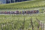 Giro d'Italia 2017 - 100th Edition - 11th stage Firenze - Bagno di Romagna 161 km - 17/05/2017 - Scenery - photo Luca Bettini/BettiniPhoto©2017