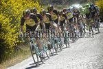 Tour of California 2017 - 5th stage Ontario - Mt. Baldy.125.5 km - 18/05/2017 - LottoNL - Jumbo - photo Brian Hodens/BettiniPhoto©2017