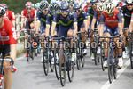 Giro d'Italia 2017 - 100th Edition - 13th stage Reggio Emilia - Tortona 167 km - 19/05/2017 - Winner Anacona (COL - Movistar) - photo Luca Bettini/BettiniPhoto©2017