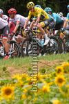 Tour de France 2017 - 104th Edition - 10th stage Perigueux - Bergerac 178 km - 11/07/2017 - Christopher Froome (GBR - Team Sky) - photo TDW/BettiniPhoto©2017
