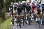 Tour de France 2017 - 104th Edition - 11th stage  Eymet - Pau 203.5 km - 12/07/2017 - Andrey Amador (CRI - Movistar) - photo Luca Bettini/BettiniPhoto©2017