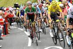 Tour de France 2017 - 104th Edition - 12th stage Pau - Peryagudes 214.5 km - 13/07/2017 - Fabio Aru (ITA - Astana Pro Team) - photo POOL Bernard Papon/BettiniPhoto©2017