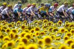 Tour de France 2017 - 104th Edition - 14th stage Blagnac - Rodez 181.5 km - 15/07/2017 - Scenery - Michael Valgren (DEN - Astana Pro Team)  Michal Kwiatkowski (POL - Team Sky) - photo Luca Bettini/BettiniPhoto©2017