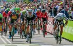 BinckBank Tour 2017 - 1st stage Breda - Venray 169,9 km - 07/08/2017 - Peter Sagan (SVK - Bora - Hansgrohe) - Phil Bauhaus (GER - Team Sunweb) - photo Dion Kerckhoffs/CV/BettiniPhoto©2017