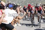 Vuelta Espana 2017 - 72th Edition - 6th stage Vila Real - Sagunto 204.4 km - 24/08/2017 - Alberto Contador (ESP - Trek - Segafredo) - Christopher Froome (GBR - Team Sky) - photo Luis Angel Gomez/BettiniPhoto©2017