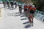 Vuelta Espana 2017 - 72th Edition - 6th stage Vila Real - Sagunto 204.4 km - 24/08/2017 - Peter Stetina (USA - Trek - Segafredo) - Alberto Contador (ESP - Trek - Segafredo) - photo Luis Angel Gomez/BettiniPhoto©2017