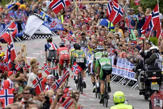 Road World Championship Bergen 2017 - UCI Men Elite' Road Race 267,5 km - 24/09/2017 - Bergen Scenery - Photo Peter De Voecht/PN/BettiniPhoto©2017