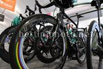 Tour Down Under 2018 - 20th Edition - Traning Day 4 - 13/01/2018 - Bora - Hansgrohe - photo Dario Belingheri/BettiniPhoto©2018