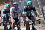 Tour Down Under 2018 - 20th Edition - Day 5  - 14/01/2018 - Peter Sagan (SVK - Bora - Hansgrohe) - Daniel Oss (ITA - Bora - Hansgrohe) - photo Dario Belingheri/BettiniPhoto©2018