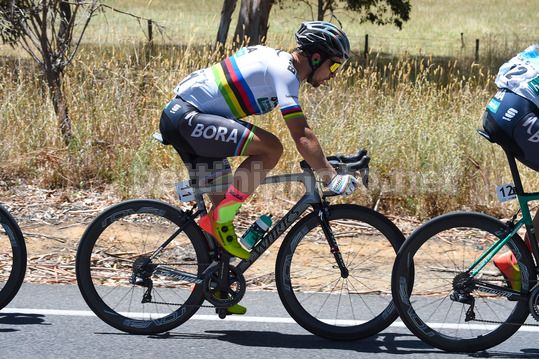 Tour Down Under 2018 - 4th Stage Norwood - Uraidla 128,2 km - 19/01/2018 - Peter Sagan (SVK - Bora - Hansgrohe) - Photo Dario Belingheri/BettiniPhoto©2017