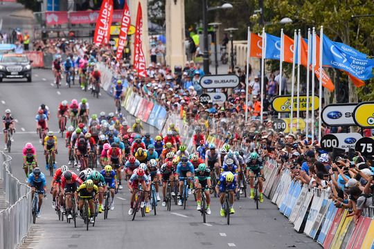 Tour Down Under 2018 - 6th stage Adelaide - Adelaide 90 km - 21/01/2018 - Andre Greipel (GER - Lotto Soudal) - Caleb Ewan (AUS - Mitchelton - Scott) - Peter Sagan (SVK - Bora - Hansgrohe) - Scenery - Photo Dario Belingheri/BettiniPhoto©2017