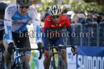 Tirreno Adriatico 2018 - 53th Edition - 6th stage Numana - Fano 153 km - 12/03/2018 - Vincenzo Nibali (ITA - Bahrain - Merida) - photo Luca Bettini/BettiniPhoto©2018